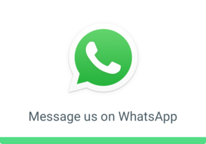 Message Alpha Bail Bonds on WhatsApp